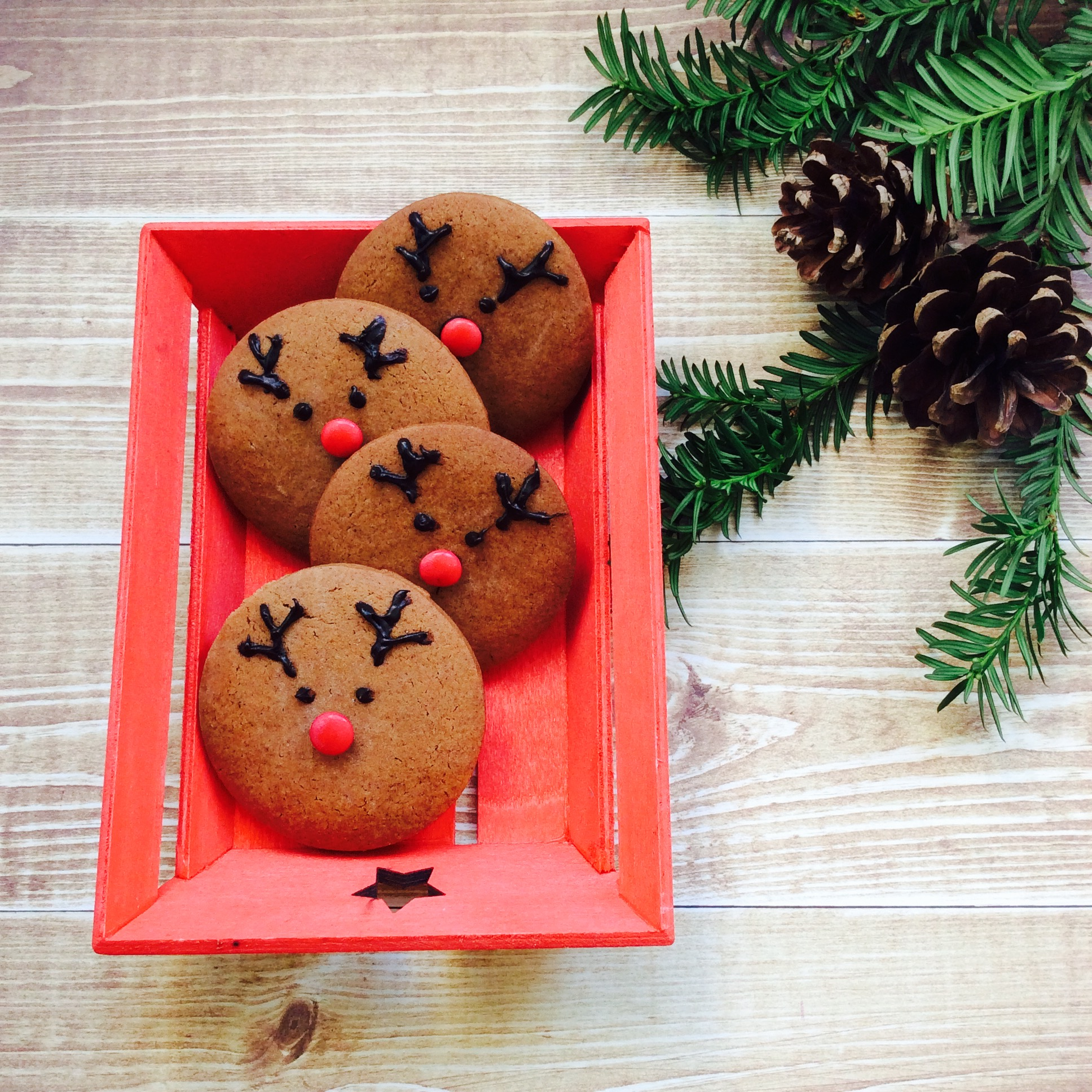 receta-galleta-navidad-reno-2