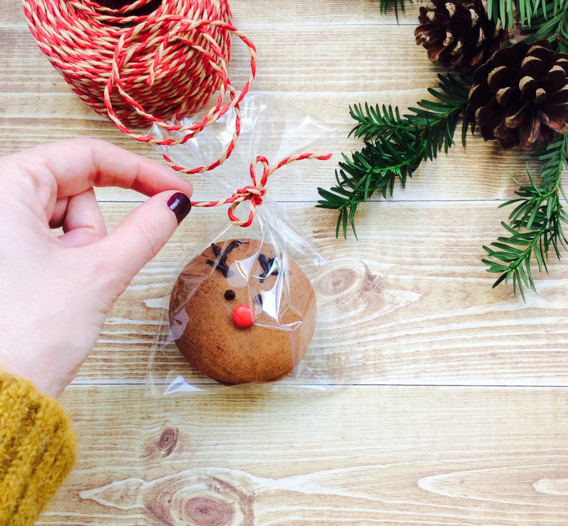 receta-galleta-navidad-reno-regalo